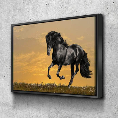 Black Stallion Canvas Set