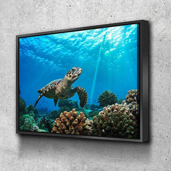 Turtle Sunrays Canvas Set