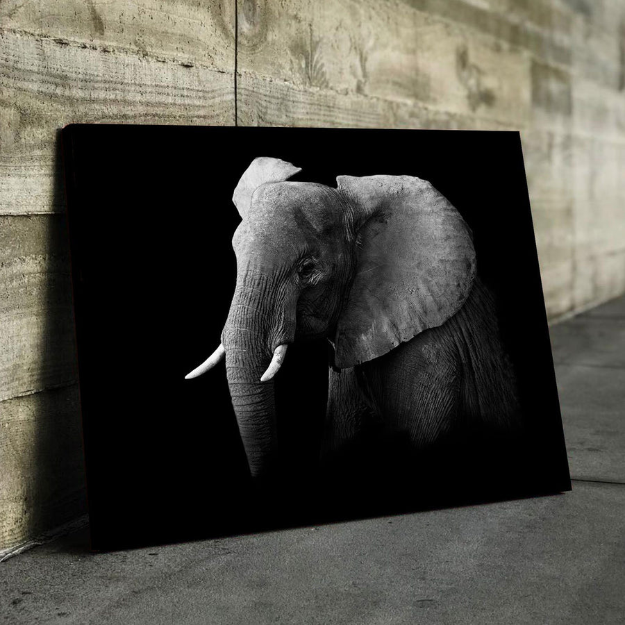 Elephant Profile Canvas Set