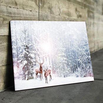 Winter Frost Canvas Set