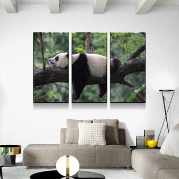 Panda Snooze Canvas Set