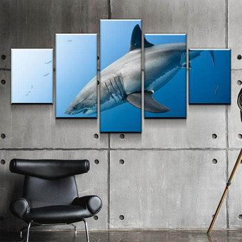 Shark Canvas Set