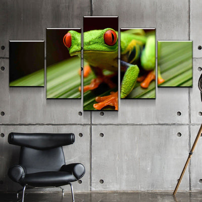 Red Eyed Tree Frog Canvas Set