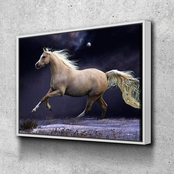 Beautiful Horse Canvas Set
