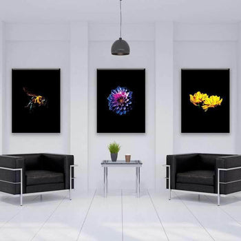 Blooming Pop of Color 3 Piece Bundle Canvas Set