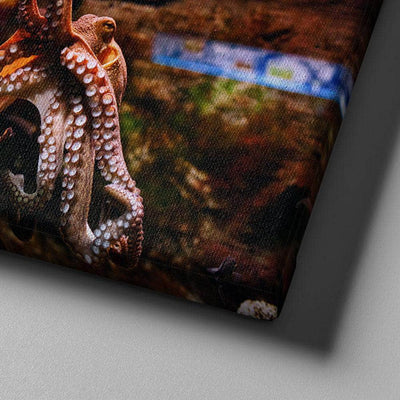 Obvious Octopus Canvas Set