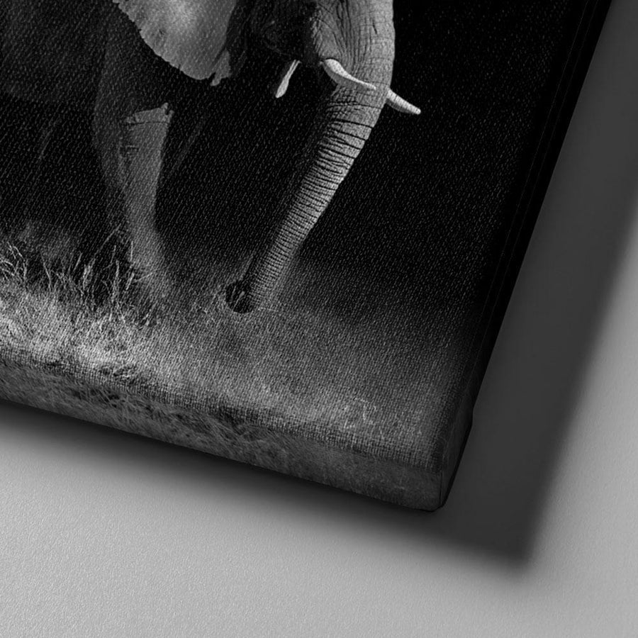 Elephant Trio Canvas Set