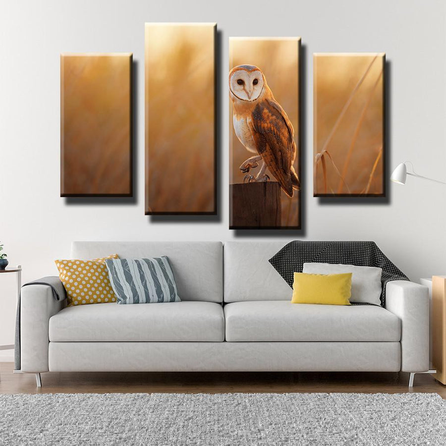 Owl Canvas Set