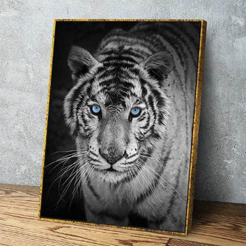 White Tiger Canvas Set