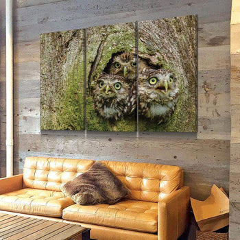 Three Owl Tree Canvas Set
