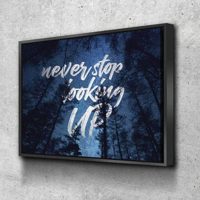 Never Stop Looking Up Canvas Set