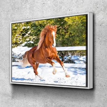 Horse In The Snow Canvas Set