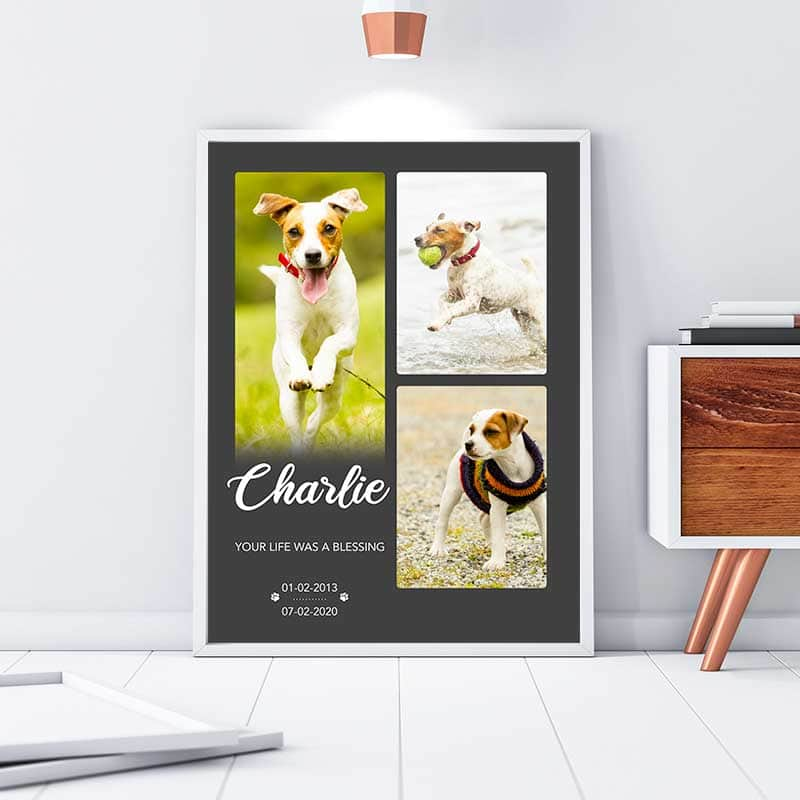 Pet Blessings Custom Canvas Set