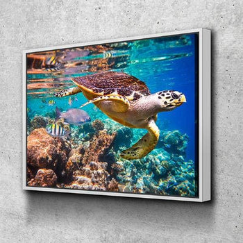 Turtle Canvas Set