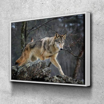 Wild Wolf Canvas Set