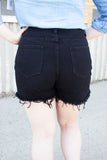 Buddy Love: Sheriff Distressed High Waisted Denim shorts - Black