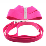 Fashion Elegant Bling Rhinestone  Suede Pet Harness & Leash (Small pets)