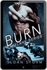 Image of Burn: Bad Boy Racing Romance (Fastlane Series)