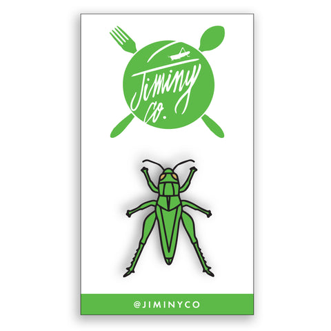 Cricket Pin