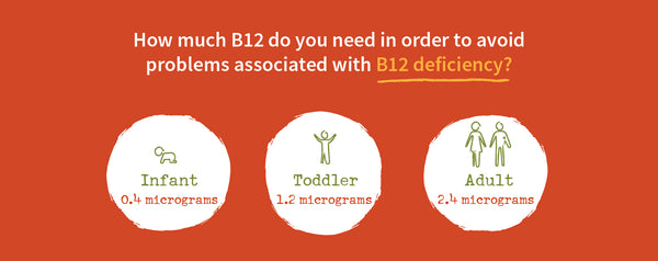 b12 requirements