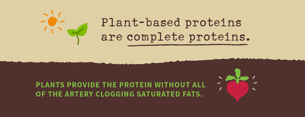 plant-based complete protein