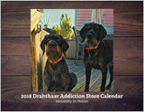 "Drahthaar Addiction - DA Store Calendar 2018 ""Versatility In Motion"""