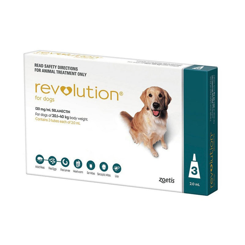 Revolution Teal for Dogs 20.1-40kg(40.1-85lbs) | Unitedpetworld.Com