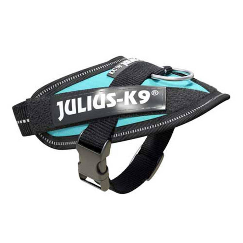 Julius-K9 IDC-Powerharness For Dogs Aquamarine | Unitedpetworld.Com