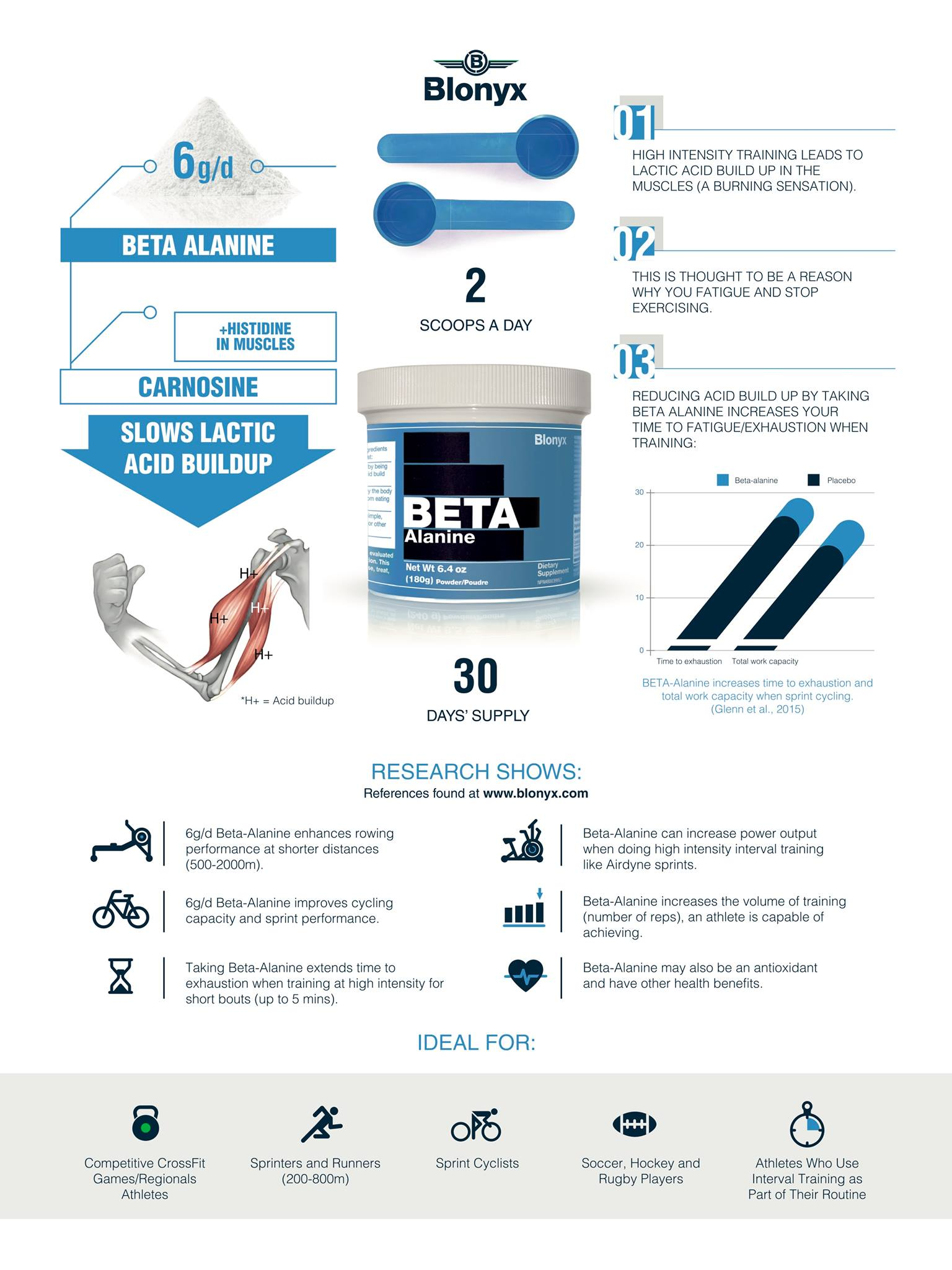 BETA Alanine | Infographic