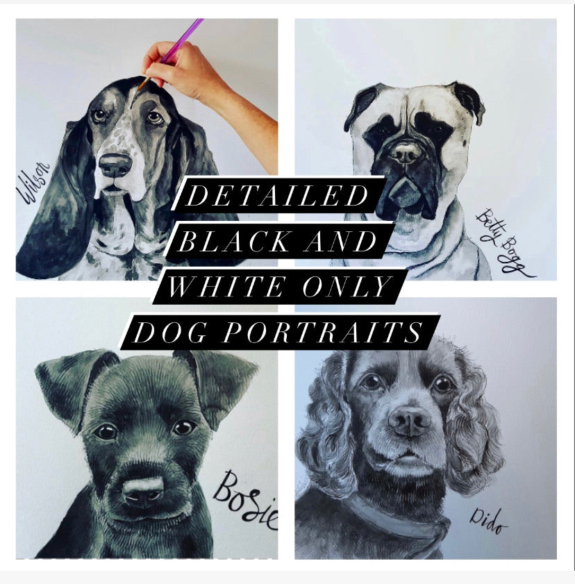 Pet portraits, detailed black and white dog portraits