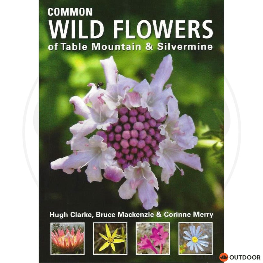 COMMON WILD FLOWERS OF TABLE MOUNTAIN (BOOK)