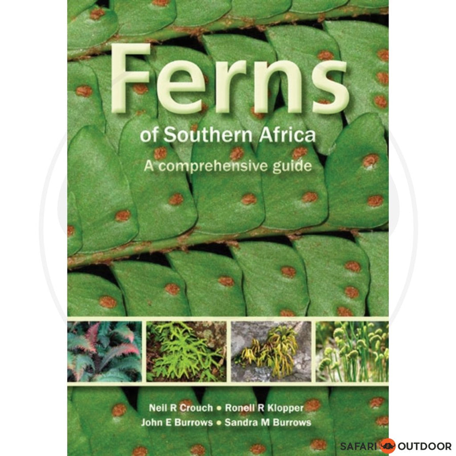 FERNS OF SOUTHERN AFRICA - CROUCH, KLOPPER, BURROWS (BOOK)