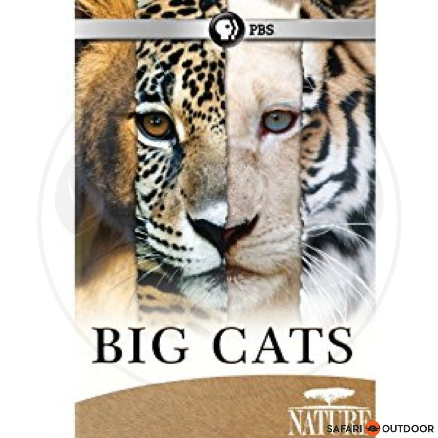 BIG CATS (DVD)