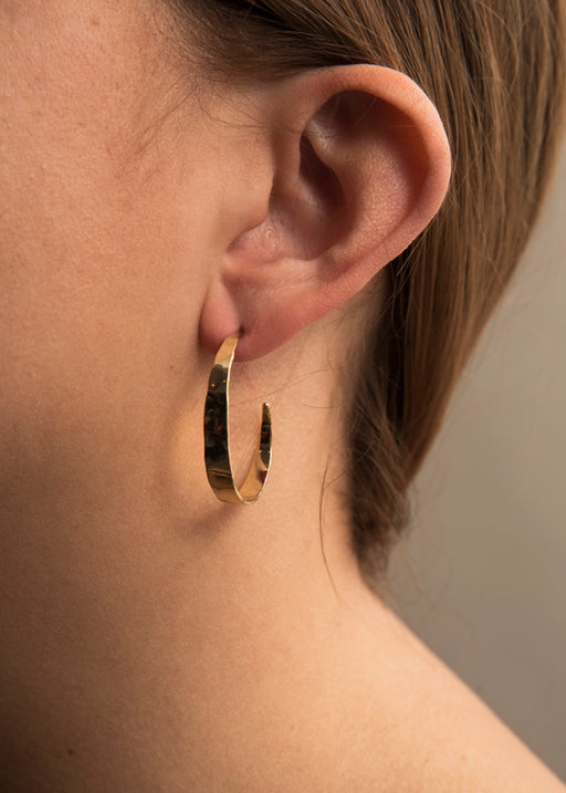 Abbie Gold Plated Earrings