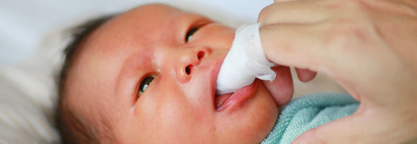 newborn's gums cleaned with gauze