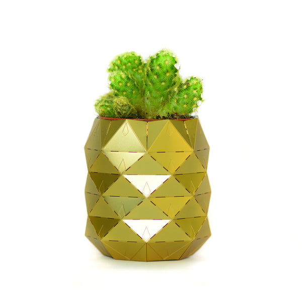 Another Studio: Brass Pineapple Pot & Plant