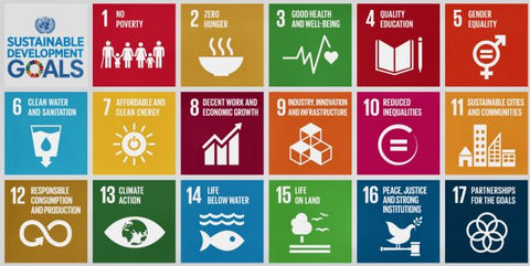 un-sustainability-goals