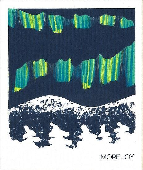 MoreJoy Other Single Pack Eco Cloths - Aurora Borealis