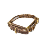 Brown Checks Martingale Collar