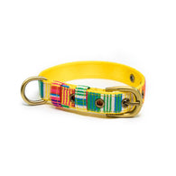 Colourful Stripes Belt Collar