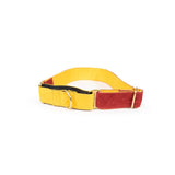 Dark Red Martingale Collar