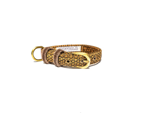 Honey Belt Collar