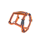 Orange with Blue H-Harness