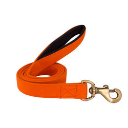 Orange Leash with padded handle