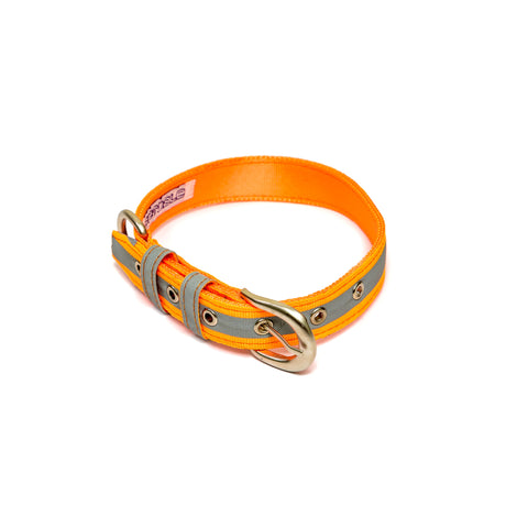 Reflective Orange Belt Collar