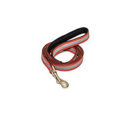 Reflective Red Leash with padded handle