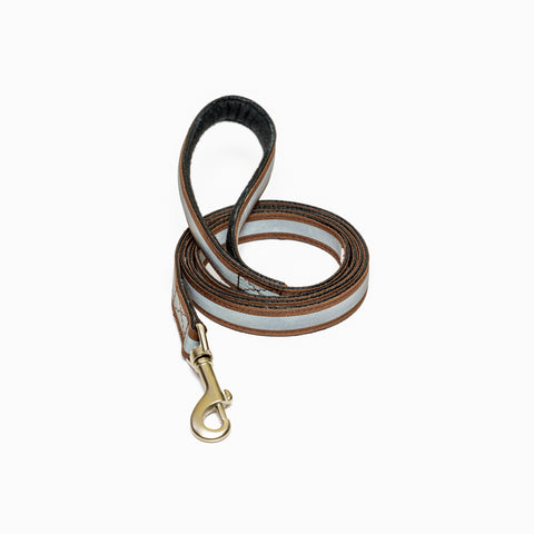 Reflective Brown Leash with padded handle