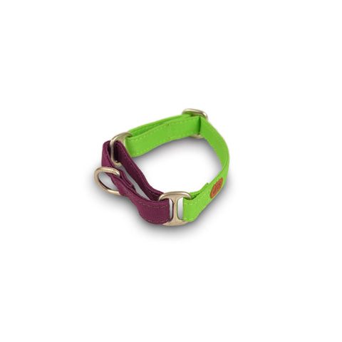 PetWale Green Martingale Collar