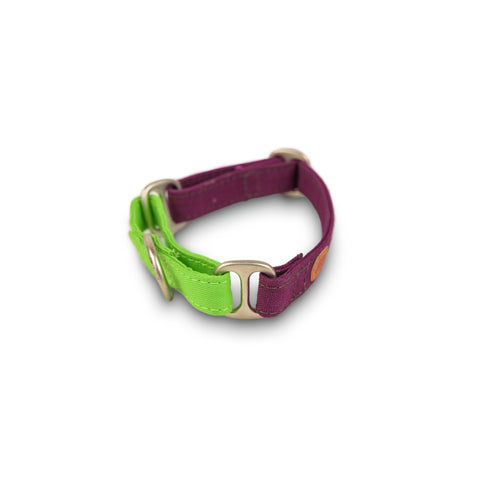 PetWale Purple Martingale Collar