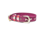 Purple Belt Collar